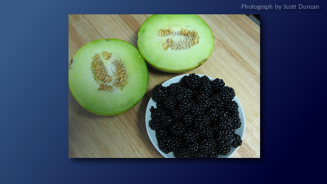 Melons and blackberries